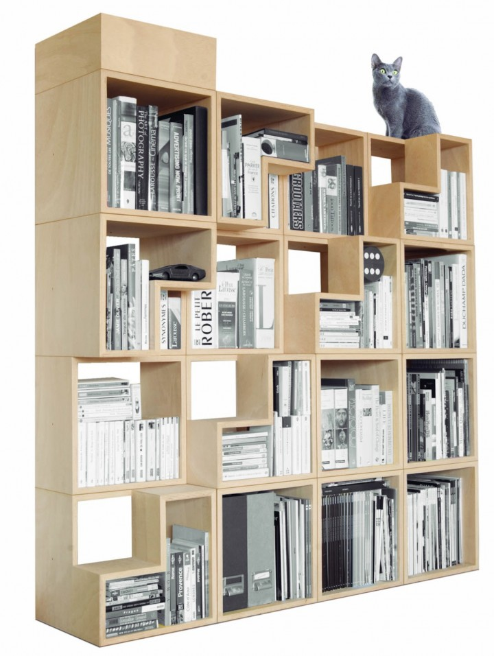 cat-library-4x4-01